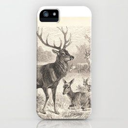Antique Deer Scene in Nature iPhone Case