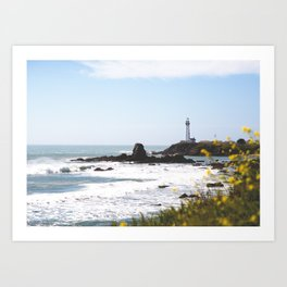 Springtime On The West Coast Art Print
