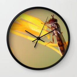 Mr Bug Wall Clock