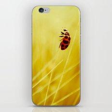 to the wind. iPhone & iPod Skin