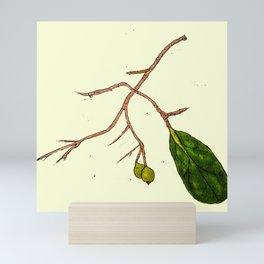 Berry & Twig Mini Art Print