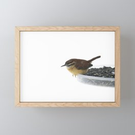 On the Edge: Carolina Wren Framed Mini Art Print