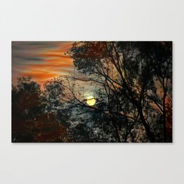 Branch and the sun on a background of the sky Canvas Print