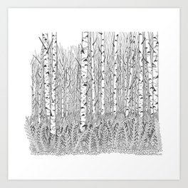 Birch Trees Black and White Illustration Art Print