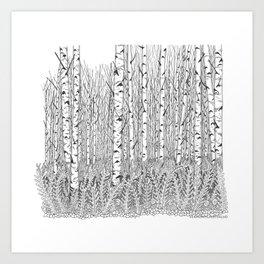 Birch Trees Black and White Illustration Art Print