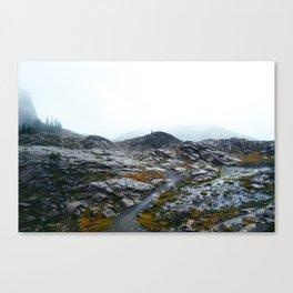 Rainy Mount Baker Canvas Print