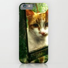 Daisy Cat Slim Case iPhone 6s