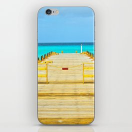 Paradise Pier iPhone Skin