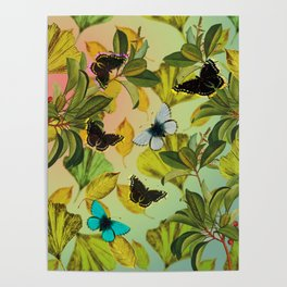Vintage Ginkgo Leaves and Butterflies Poster