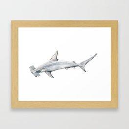 Hammerhead shark for shark lovers, divers and fishermen Framed Art Print