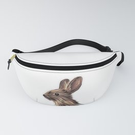 Complex abstract illustration of a HARE Fanny Pack