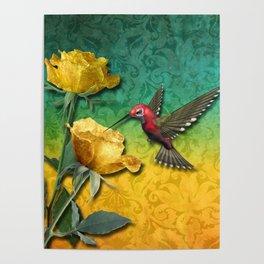 Hummingbird Gold Roses & Damask Poster