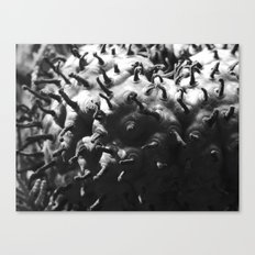 strange fungus 2017 III Canvas Print