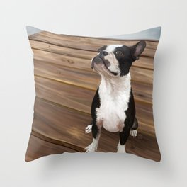 Boston Terrier 1 Throw Pillow