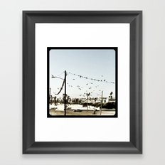 The birds. Framed Art Print