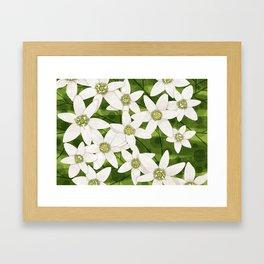 Flower pattern clematis/jasmine Framed Art Print