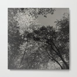 At peace - forest Metal Print