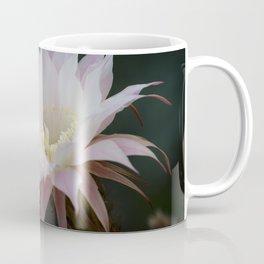 Beautiful Pale White Pink Echinopsis Oxygona Cactus Flower Coffee Mug