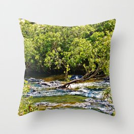 Beautiful river running over rocks Throw Pillow