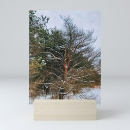 Without its leaves. Leafless Mini Art Print