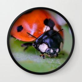 Macro Ladybug Photograph Wall Clock