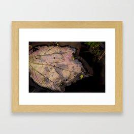 FALL FEVER Framed Art Print