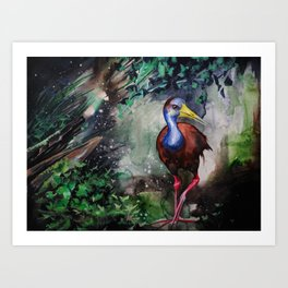 Grey Necked Wood Rail Art Print