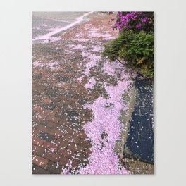Spring in the West End (2) Canvas Print