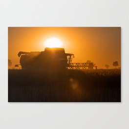 Midsummer time is harvest time of the cereal fields Canvas Print