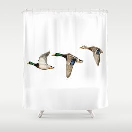 Flying Mallards Shower Curtain