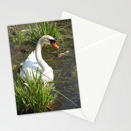 Sunning Himself Stationery Cards