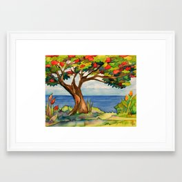 Flamboyant Tree Framed Art Print