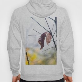 Orange leaves, trying to stay alive Hoody