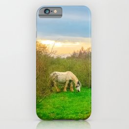Gypsy Horse iPhone Case