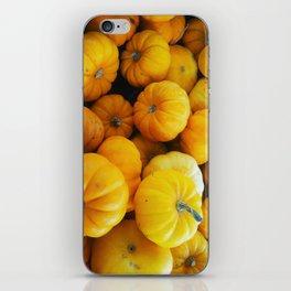 Pumpkin Minis iPhone Skin