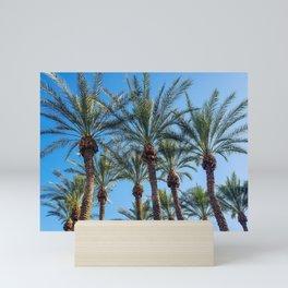 Scottsdale Palms Mini Art Print