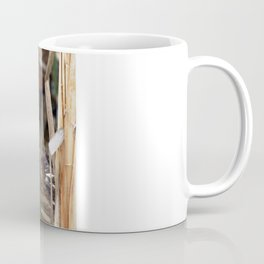 American Bittern - Take Two Coffee Mug