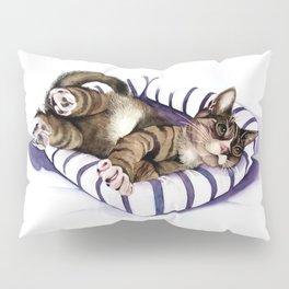 A Good Fit! Pillow Sham