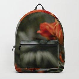 Orange Tulips in Amsterdam | Fine art print spring flowers Backpack