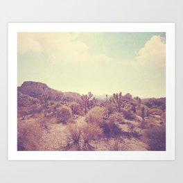 Joshua Tree photo. No. 357 Art Print