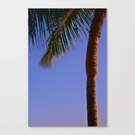 Simply Paradise Canvas Print