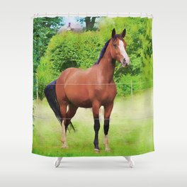 Alone horse watercolor painting  Shower Curtain