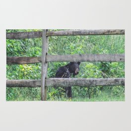 I See a Bear! Rug