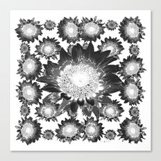 Decorative Black & White Grey Abstracted Floral Art Canvas Print