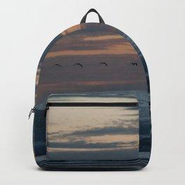 San Francisco fliers Backpack