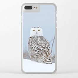 Adrift amid the drifts Clear iPhone Case
