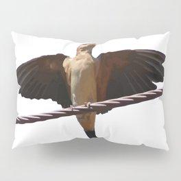 Swallow Song Vector Pillow Sham