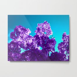 purple maple tree VI Metal Print