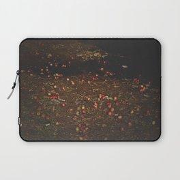 Bieszczady Laptop Sleeve