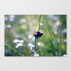 Busy Bee Bumbling  Canvas Print
